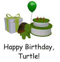 Turtle's Birthday Sight Word Reader